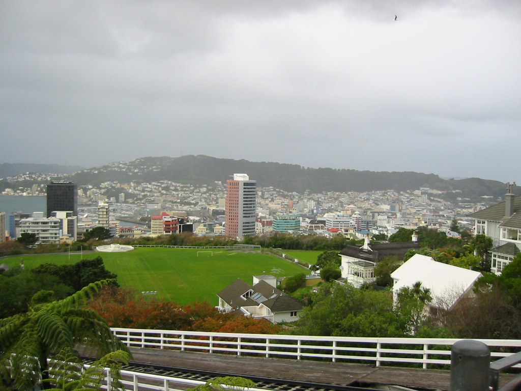 Wellington from the Botanical Gardens